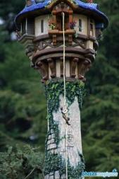 Le Pays des Contes de Fées - Rapunzel
