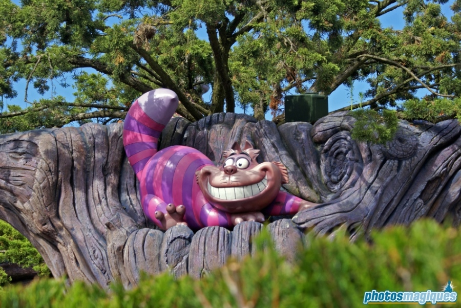 Alice's Curious Labyrinth
