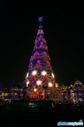 Christmas Tree Lighting Ceremony