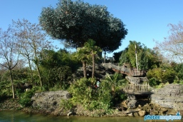 Adventure Isle - Northern Island