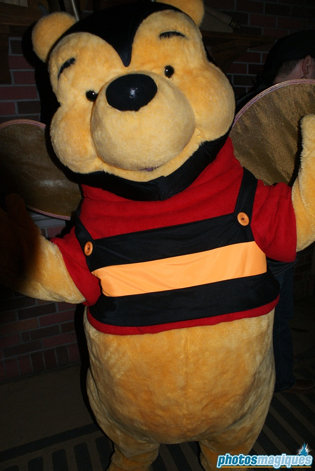 2008: Winnie the Pooh  (Mickey's Not So Scary Halloween Party)
