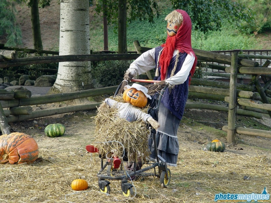 The friendly scarecrows nurture the patch
