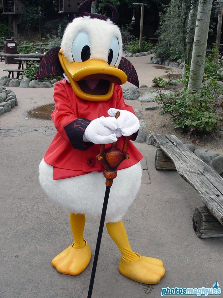 2004: Donald Duck