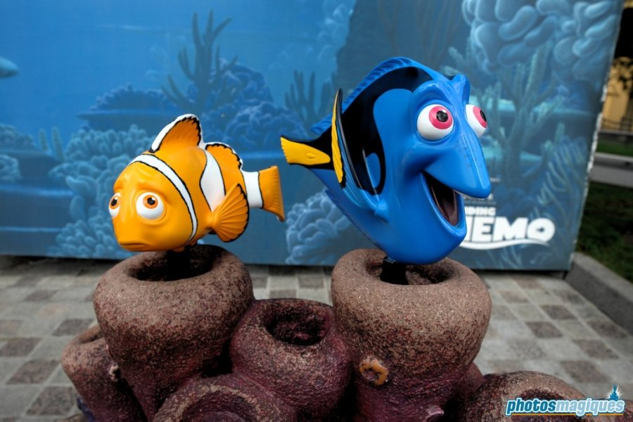 Finding Nemo photo location photo location