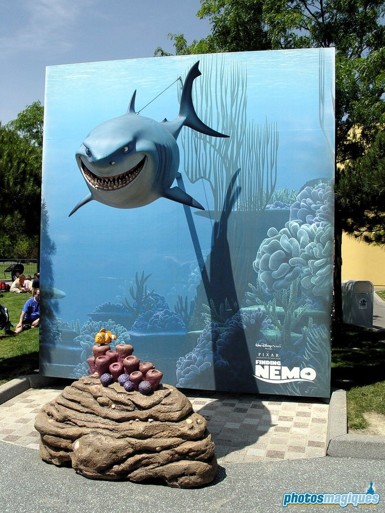 Finding Nemo photo location