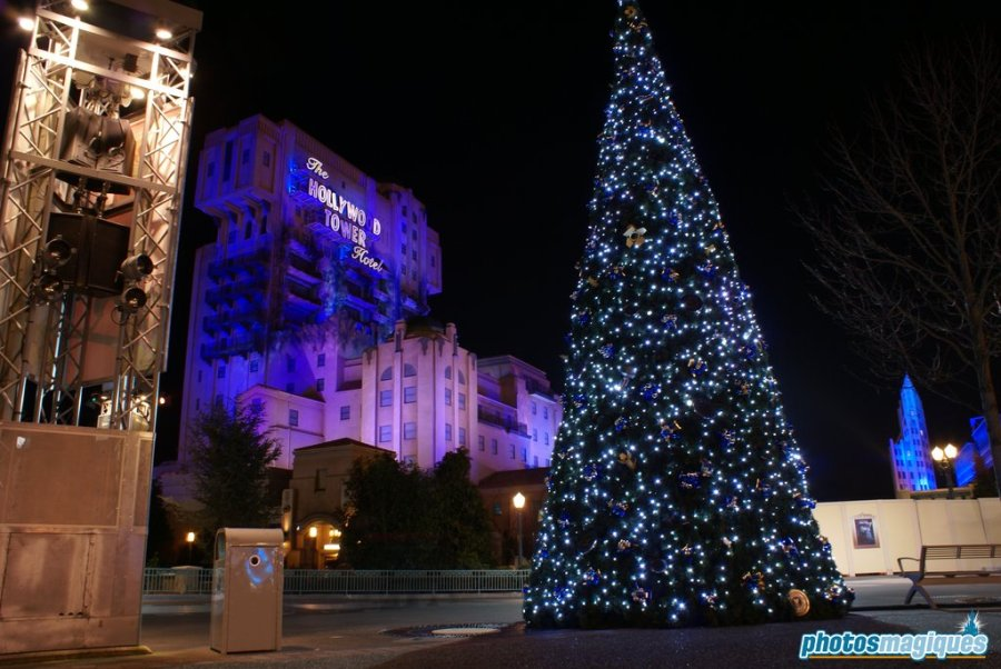 Walt Disney Studios Park Christmas Tree