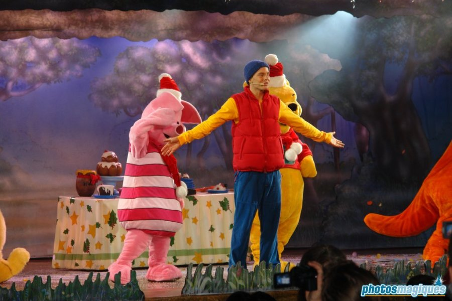 Winnie the Pooh and Friends Too